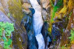 Mt Rainier pic-212