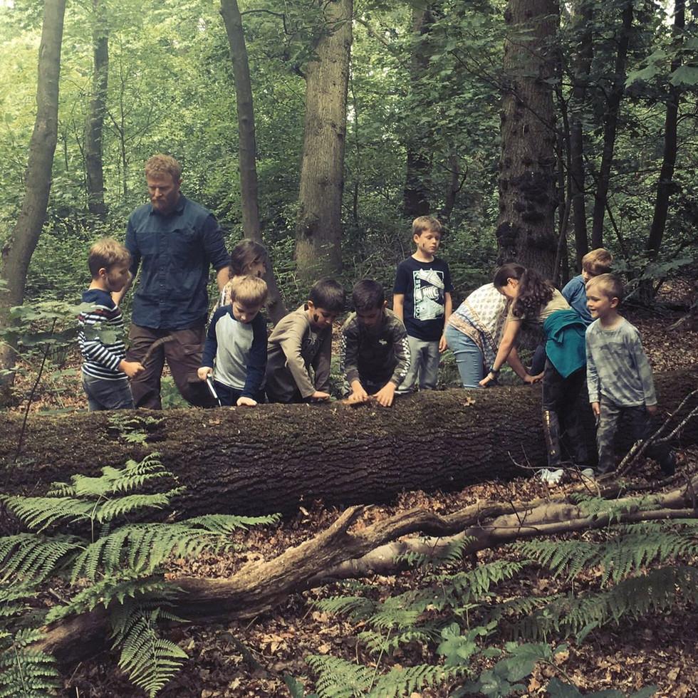 Into the Wild Bushcraft