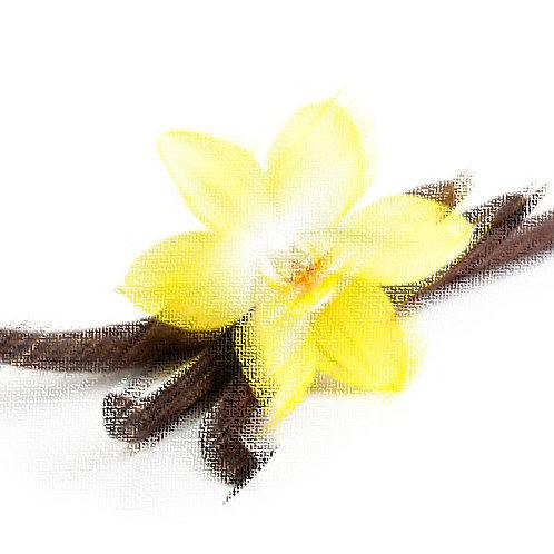 Essência Tradicional Vanilla VS 010246