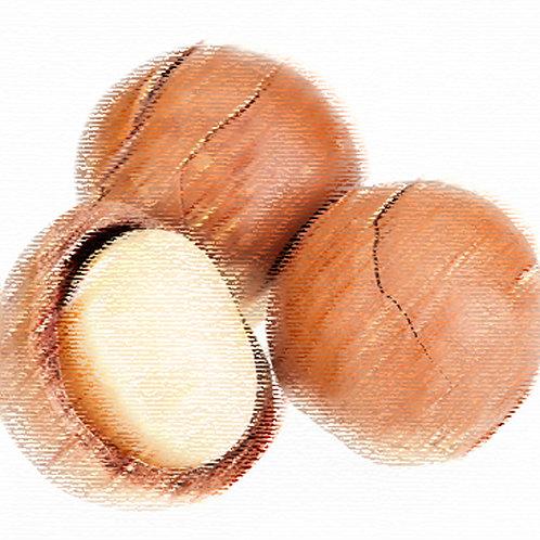 Essencia Tradicional Macadamia 100ml 010082