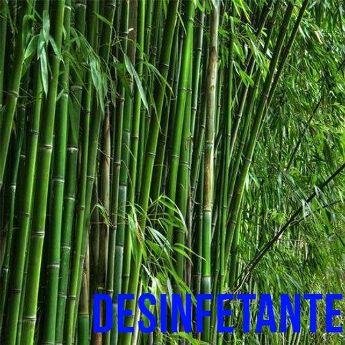 Essencia HS Bambu MM BT 1/80- 230100