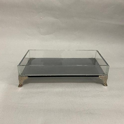 Bandeja de vidro cx c/ pe 10x20 wi