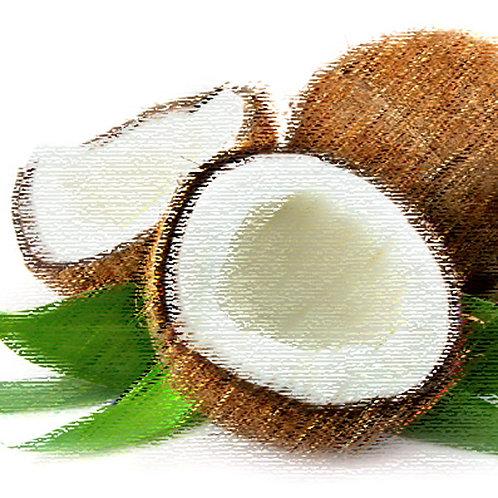 Essencia Tradicional Coco 100ml 010256