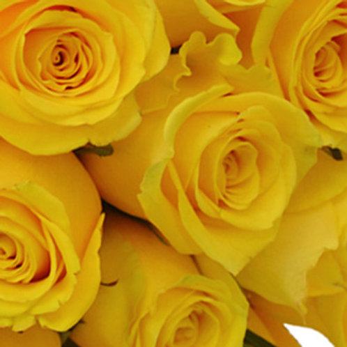 Essencia Rosas Amarelas- 010115