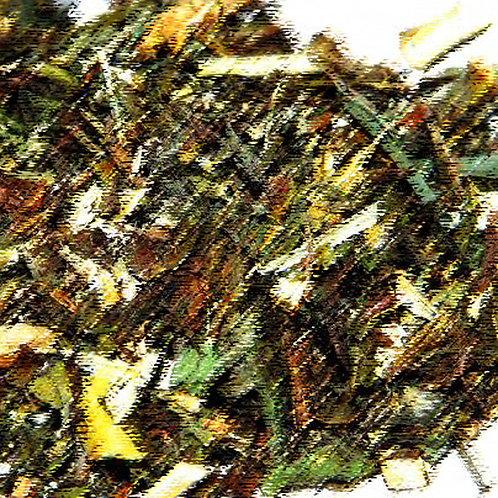 Essencia AVT NEW Cascas & Folhas Tradicional 100ml 430015