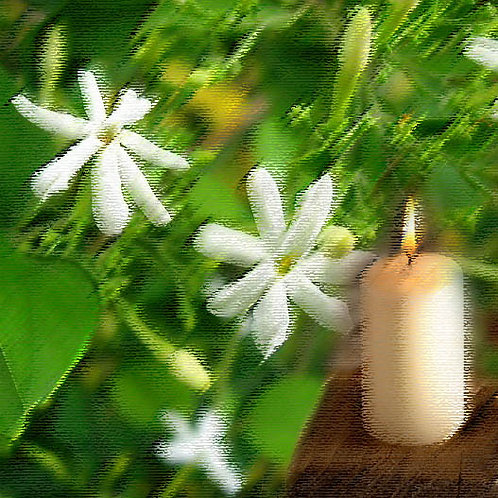 Essencia Vela White Jasmine- 420027