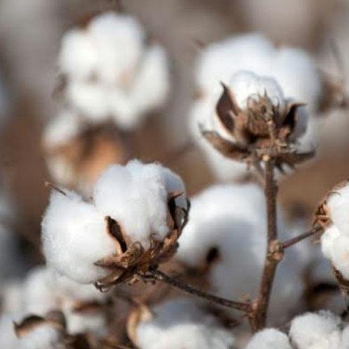 Essencia Silver Flor de Algodao-  380181
