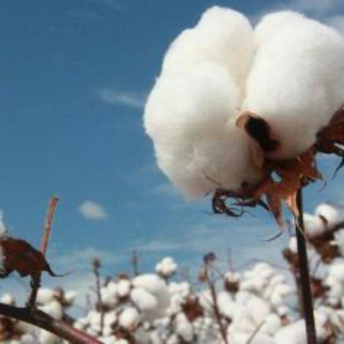 Essencia Cotton Touch - 010063