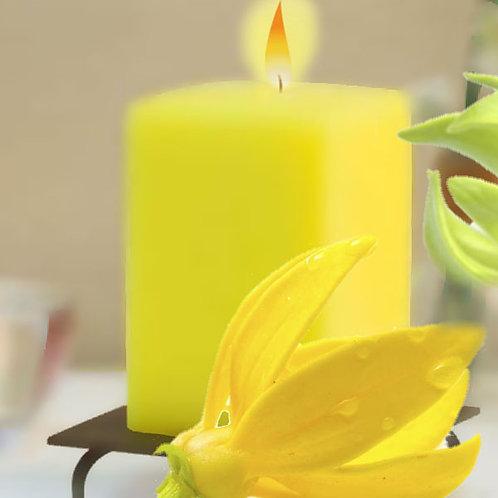 Essencia Vela Ylang Ylang- 420018