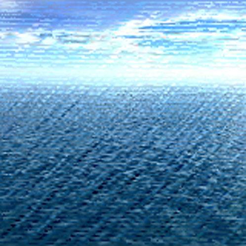 Essência Oceanus Tradicional 100ml 010035