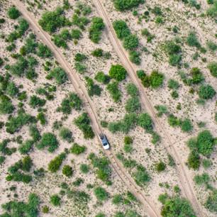 カラハリ砂漠