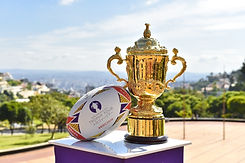 Rugby trophy Boomerang Effect