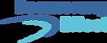 Boomerang_Logo_RGB 3.png