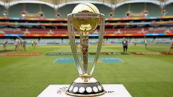 Cricket Cup Boomerang Effect