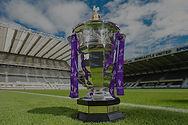 Rugby%20League%20Trophy_edited.jpg