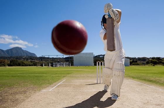 Cricket Boomerang Effect
