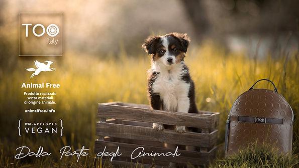 ANIMAL FREE2.jpg