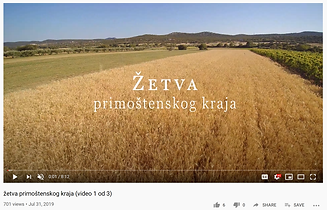 zetva video screenshot.png
