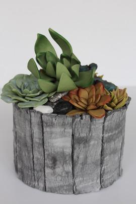 Sarah Thomas - Succulent Cake.jpg