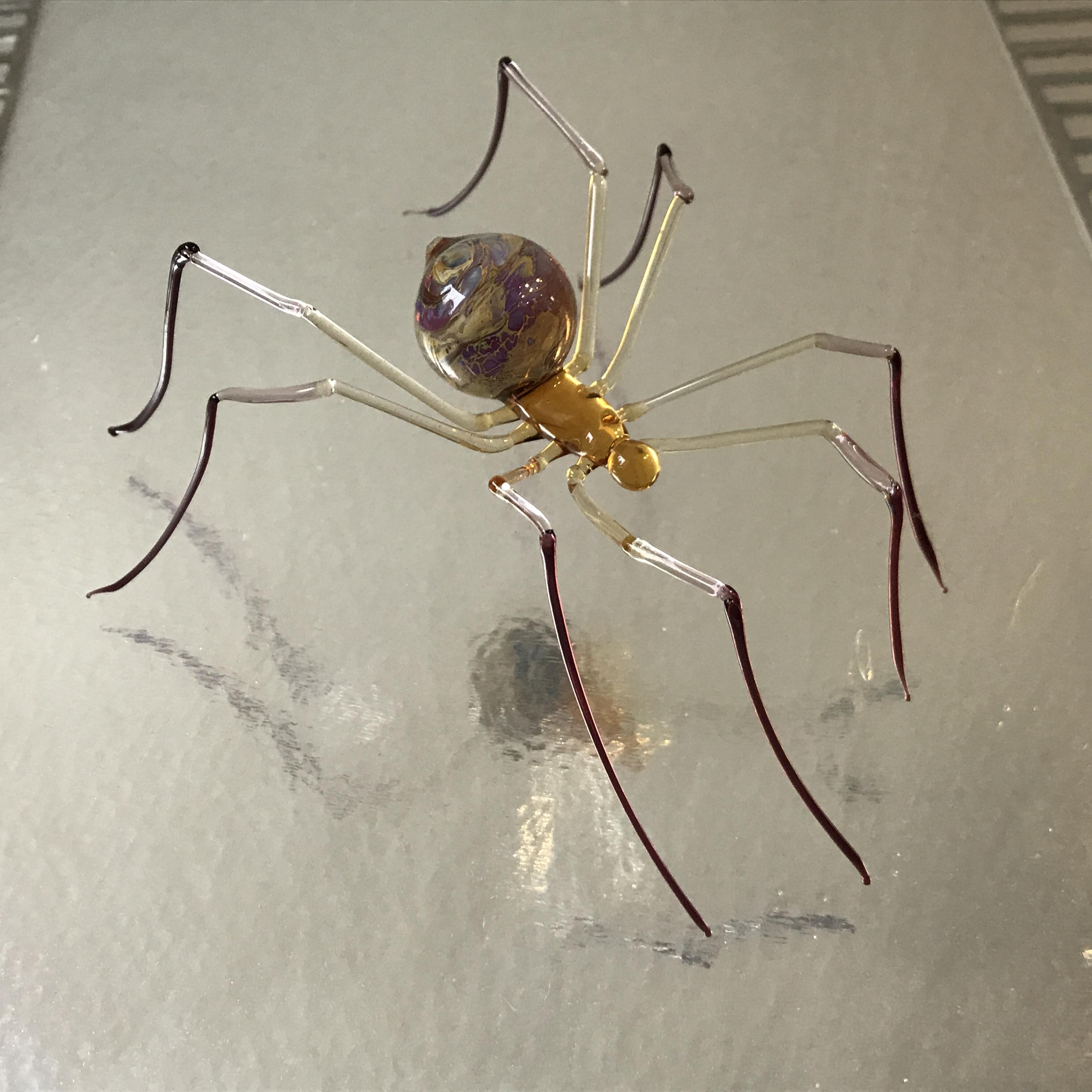 Becky Haywood Glass spider