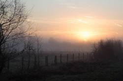 Mosses Sunrise