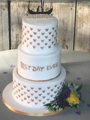 Tess's Cakes 56.jpeg