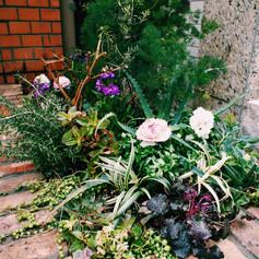 店頭花壇植栽