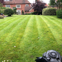 Lawn Mowing DC Gardening services