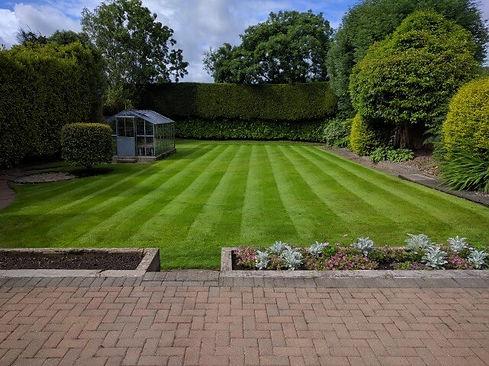 dc mow lawn.jpg