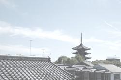 何と言っても京都に詳しい