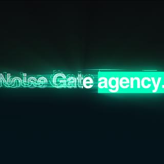 NOISE GATE AGENCY