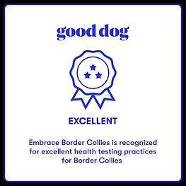 gooddog2.JPG