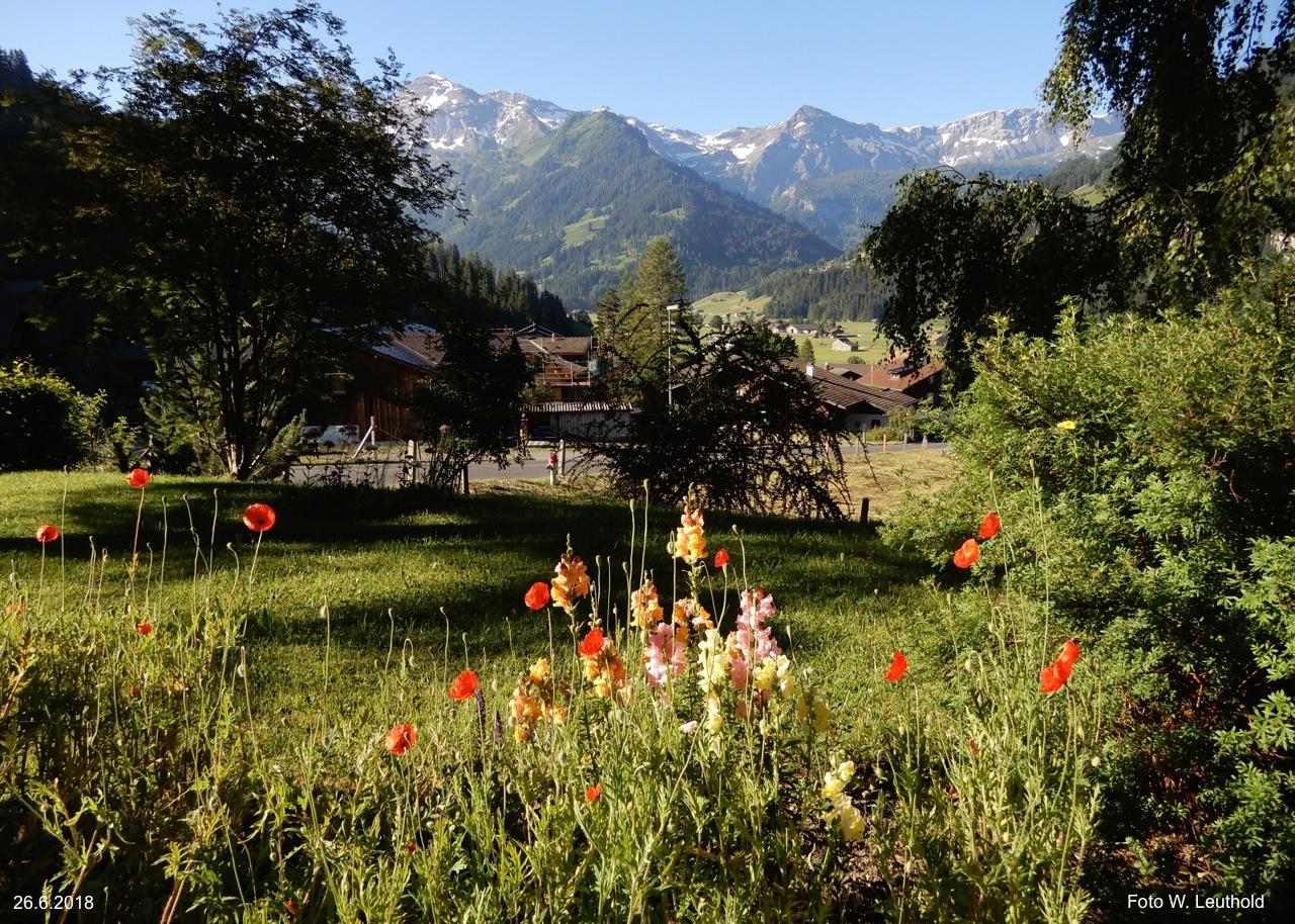 Gartenwohung: Die Aussicht