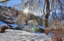Wintertraum im Garten