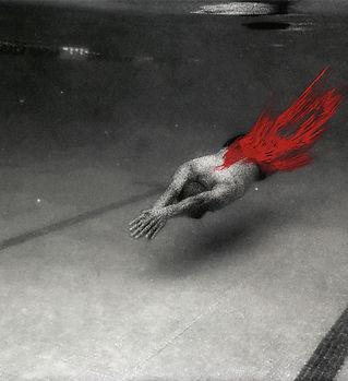 1.animal1copia.jpg