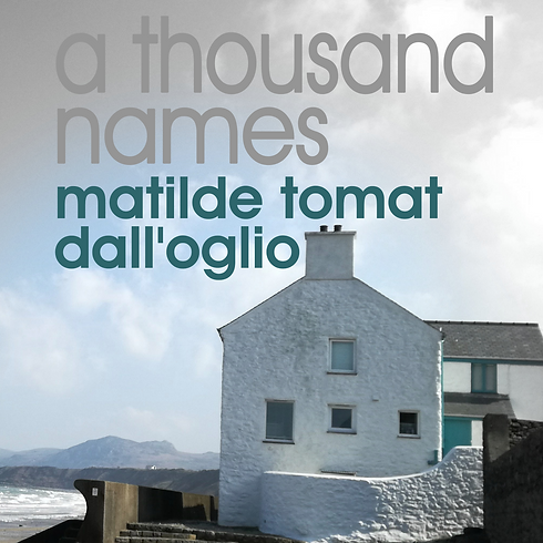 a thousand names book cover