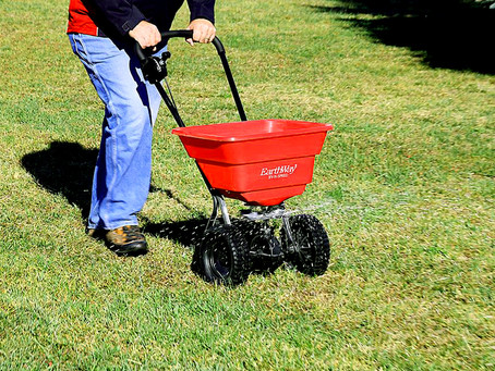 6 Tips for DIY Lawn Care