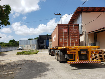 How do we, at Onvit, export our cashew nut kernels?