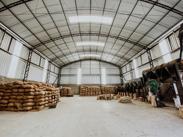 The beginning of our process and how the raw cashew nut (RCN) is stored in our factory