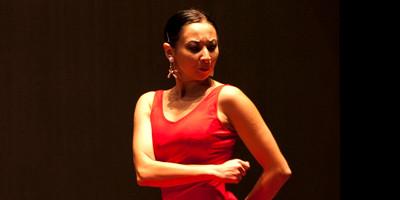 alrojo flamenco 04 2016.jpg