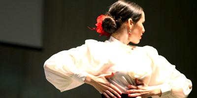 alrojo flamenco 02 2016.jpg