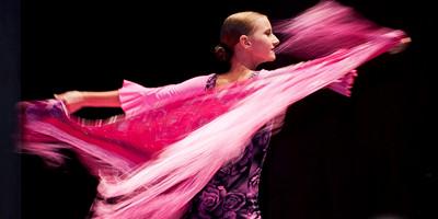 alrojo flamenco 01 2016.jpg