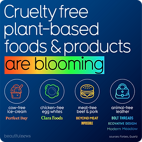 Cruelty free plant based foods and products
