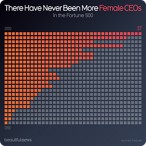 Female CEO Statistics