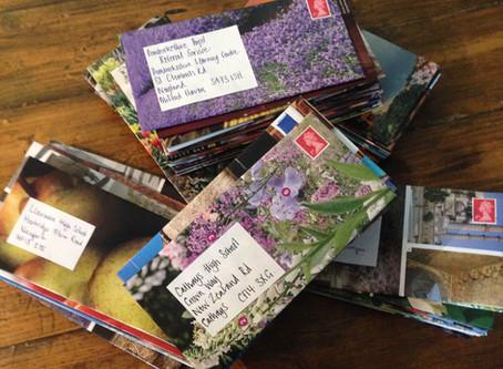 Mass Mail-Out EcoArt Style
