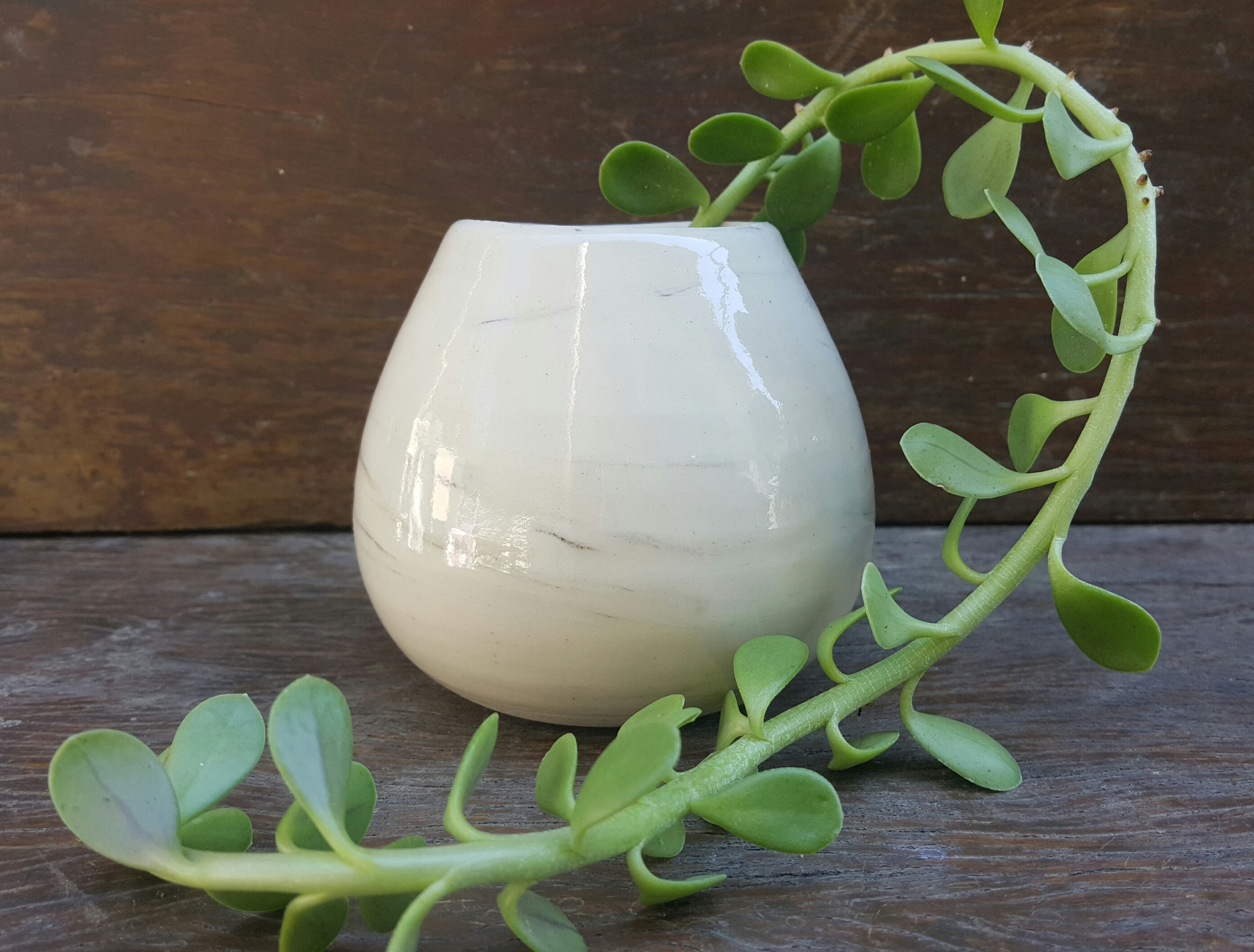 glossy porcelain