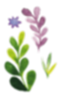 Flowers-10.png