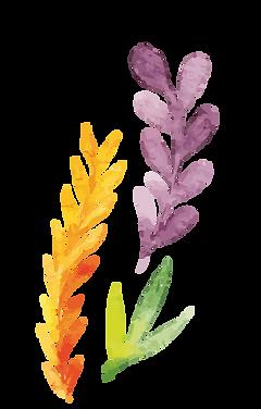 Flower-bar2-02.png
