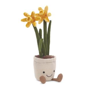 Daffodil - $32.00