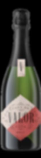 Bottled Brut Cava